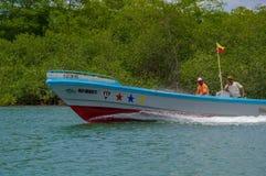 Muisne, Ecuador - 16 marzo 2016: Due pescatori locali che si siedono in loro barca che guida accanto al litorale, verde Fotografia Stock