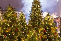 Muitas árvores de Natal coloridas decoradas com a bola amarela e vermelha foto de stock royalty free