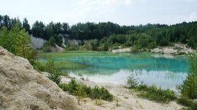 Muitas árvores verdes e água azul Fotos de Stock
