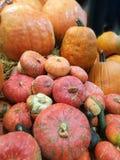Muitas abóboras em um mercado dos fazendeiros fotografia de stock