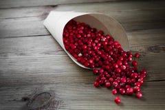 Muitas airelas vermelhas brilhantes em um saco de papel Fotos de Stock