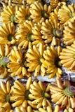 Muitas bananas em Tailândia, mercado de flutuação fotografia de stock