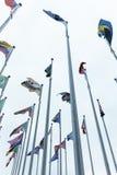 muitas bandeiras dos países com polos Foto de Stock Royalty Free