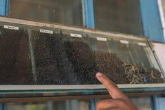Muitas caixas do chá preto no armazém da fábrica do chá Fotos de Stock