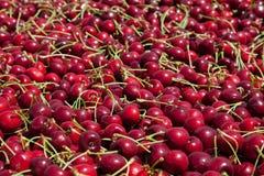 Muitas cerejas maduras vermelhas em um escaninho pronto para ser empacotado para a venda imagens de stock