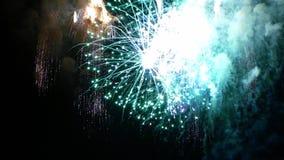 Muitas explosões dos fogos-de-artifício Movimento lento video estoque