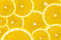 Muitas fatias de fruto alaranjado Imagens de Stock Royalty Free