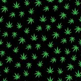 Muitas folhas do cannabis Folhas do verde em um fundo preto ilustração royalty free