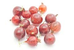 Muitas groselhas vermelhas no branco Fotografia de Stock Royalty Free