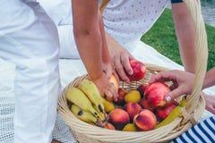 Muitas mãos em uma cesta com frutos imagens de stock