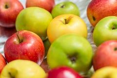 Muitas maçãs multicoloridos Foto de Stock Royalty Free