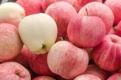 Muitas maçãs vermelhas Fotos de Stock