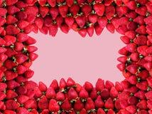 Muitas morangos maduras com espaço para o texto em um fundo das rosas O conceito do alimento saudável Imagens de Stock Royalty Free