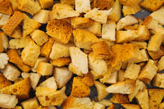 Muitas partes pequenas de pão secado Foto de Stock Royalty Free