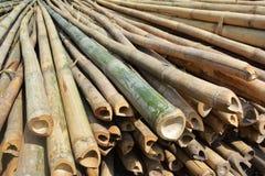 Muitas pilhas dos troncos de bambu Foto de Stock