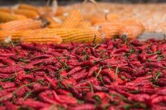 Muitas pimentas frias encarnados Fotos de Stock