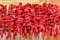 Muitas pimentas vermelhas que penduram em cordas no mercado imagem de stock royalty free
