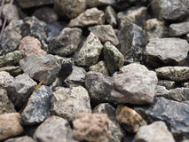 Muitas rochas estão colocando no assoalho Fotos de Stock