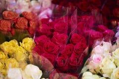 Muitas rosas coloridas diferentes no florista imagem de stock