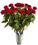 Muitas rosas vermelhas Foto de Stock Royalty Free