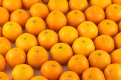Muitas tangerinas como o close up do fundo Foto de Stock Royalty Free