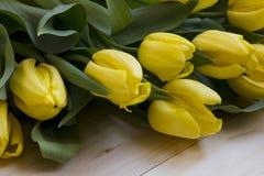 Muitas tulipas em um fundo de madeira claro Vista superior Fotografia de Stock