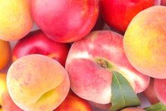 Muitas variedades diferentes de close-up fresco dos pêssegos Fundo Imagem de Stock