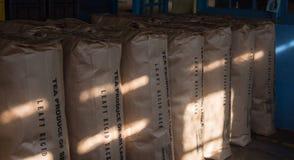 Muito armazenamento preto dos saquinhos de chá no estoque da fábrica em Sri Lanka Fotografia de Stock