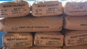 Muito armazenamento preto dos saquinhos de chá no estoque da fábrica em Sri Lanka Imagens de Stock Royalty Free