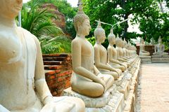 Muito Buda ao longo do trajeto no templo imagem de stock royalty free
