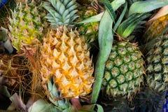 Muito fundo do fruto do abacaxi fotografia de stock