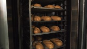 Muito pão fresco pré-feito em um forno de padaria em uma padaria Negócio da panificação Pão fresco dos cereais com sementes Foto de Stock
