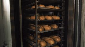 Muito pão fresco pré-feito em um forno de padaria em uma padaria Negócio da panificação Pão fresco dos cereais com sementes Fotografia de Stock Royalty Free