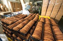 Muito produção maciça da fábrica doce do alimento do bolo Imagens de Stock