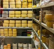 Muito queijo Fotografia de Stock Royalty Free