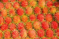 Muito rambutan vermelho maduro arranjado Fotografia de Stock Royalty Free