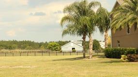 Muito Sunny Beautiful Yard Imagem de Stock