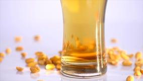 Muitos amendoins que estão sendo derramados contra sobre um fundo branco Fundo da cerveja Fim acima vídeos de arquivo
