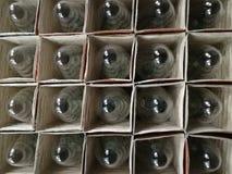 Muitos bulbos incandescentes na caixa envolveram individualmente fotografia de stock