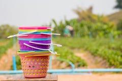 Muitos colorem a cesta Imagens de Stock Royalty Free