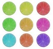 Muitos colorem a fatia do limão do cal Imagem de Stock Royalty Free