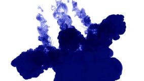 Muitos fluxos da tinta azul isolada injetam Gota azul do matiz na água, tiro no movimento lento Uso para o fundo manchado de tint ilustração do vetor