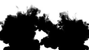 Muitos fluxos de tinta preta em mover-se branco no movimento lento, na tinta ou no fumo injetam A pintura preta ondula na água pa ilustração stock