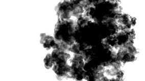 Muitos fluxos de tinta preta em mover-se branco no movimento lento, na tinta ou no fumo injetam Preto na água para manchado de ti vídeos de arquivo