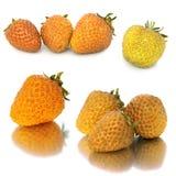 Muitos grupos diferentes de morango amarela no fundo branco, isolado com as morangos, muito diferentes em uma folha Imagens de Stock Royalty Free