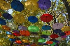 Muitos guarda-chuvas coloridos Imagens de Stock Royalty Free