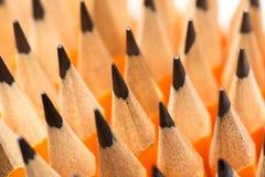 Muitos lápis de madeira foto de stock