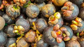 Muitos mangustão estão na cesta no supermercado, mangustão são rainha do fruto em Tailândia É fruto favorito de povos dos thais foto de stock royalty free