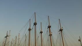 Muitos mastros Foto de Stock Royalty Free