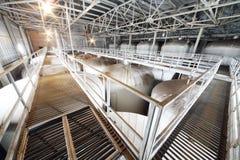 Muitos metal reservatórios na fábrica de Ochakovo Imagens de Stock